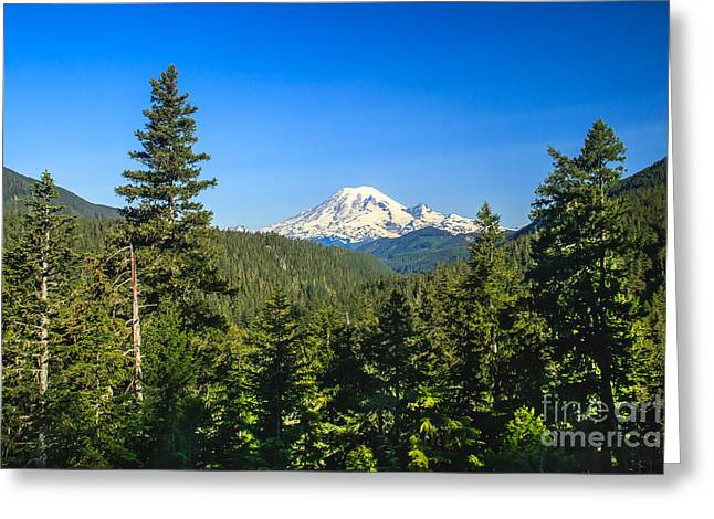 Haybale Greeting Cards - Mt Rainier Greeting Card by Robert Bales