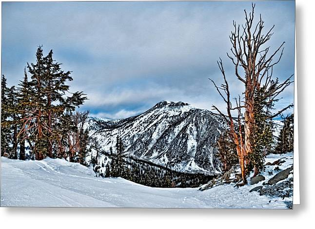 Mount Rose Ski Resort Greeting Cards - Mt. Rose Greeting Card by Maria Coulson