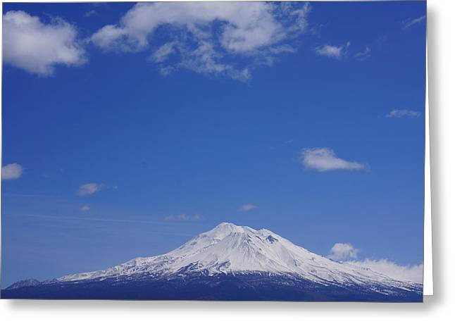 Mt. Shasta Greeting Cards - Mt Shasta Art Prints Shasta Mountain Greeting Card by Baslee Troutman