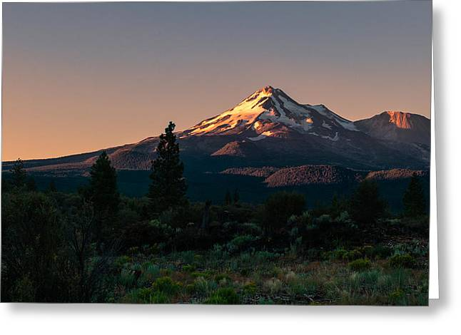 Mt Pyrography Greeting Cards - Mt Shasta Greeting Card by John Ferebee
