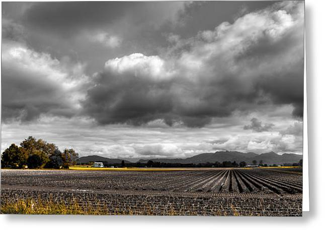 Puddle Greeting Cards - Mt Vernon Farmland - Washington State Greeting Card by David Patterson