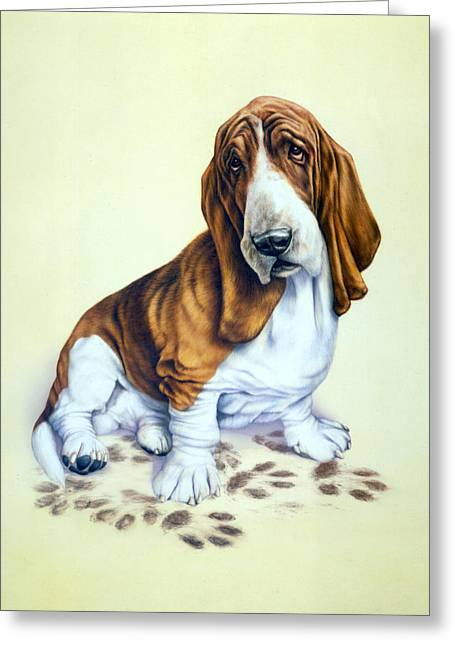 White Dogs Greeting Cards - Mucky Pup Greeting Card by Andrew Farley