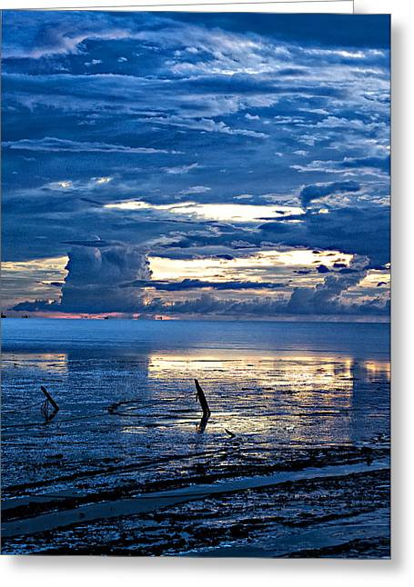 Sarita Rampersad Greeting Cards - Mud Flats Greeting Card by Sarita Rampersad