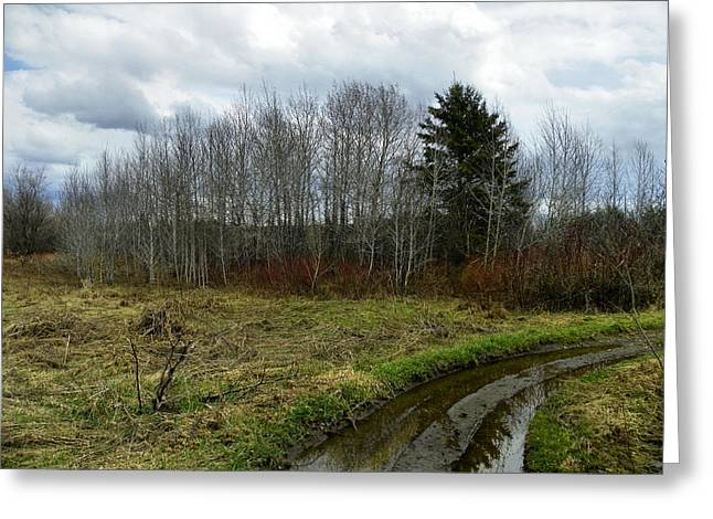 Mud Season Greeting Cards - Mud Season Greeting Card by Gene Cyr