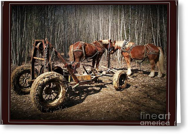 Mud Season Greeting Cards - Mud Season - with border Greeting Card by Joy Nichols