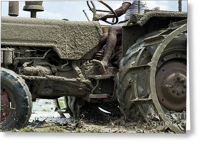 Driving Machine Greeting Cards - Mud Greeting Card by Tim Gainey