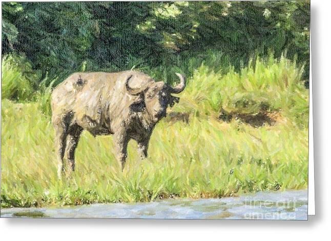 East Africa Greeting Cards - Muddy Buffalo Syncerus caffer River Nile Uganda Greeting Card by Liz Leyden