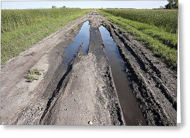 Country Dirt Roads Greeting Cards - Muddy Country Road Greeting Card by Donald  Erickson