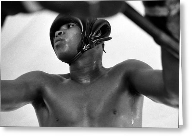 African-americans Greeting Cards - Muhammad Ali Looking Through Ropes Greeting Card by Retro Images Archive