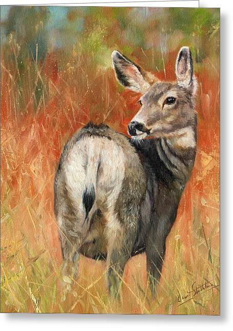 Mules Greeting Cards - Mule Deer Greeting Card by David Stribbling