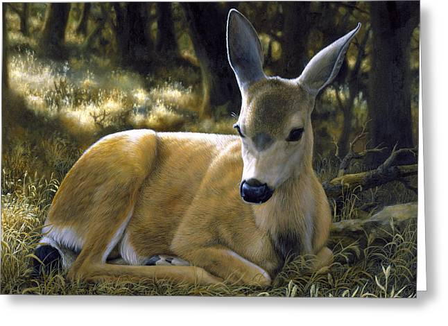 Does Greeting Cards - Mule Deer Fawn - A Quiet Place Greeting Card by Crista Forest