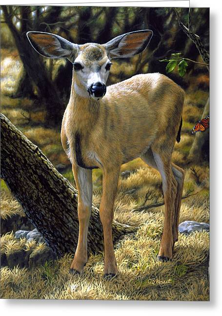 Doe Greeting Cards - Mule Deer Fawn - Monarch Moment Greeting Card by Crista Forest