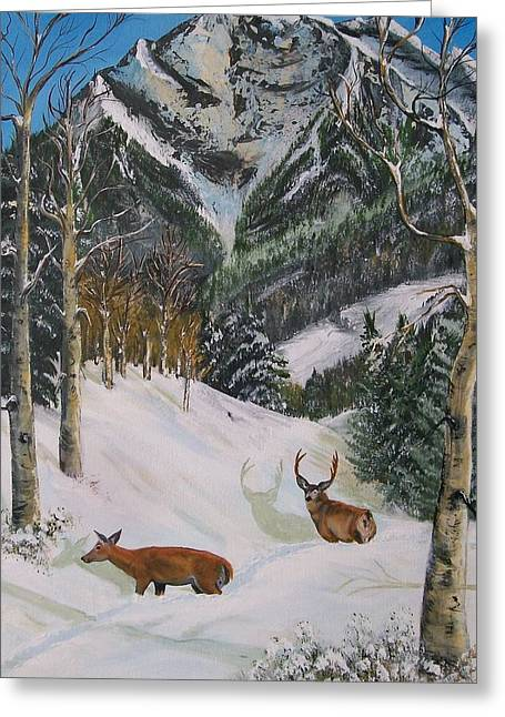 Snow Tree Prints Greeting Cards - Mule Deer in Winter Greeting Card by Sharon Duguay