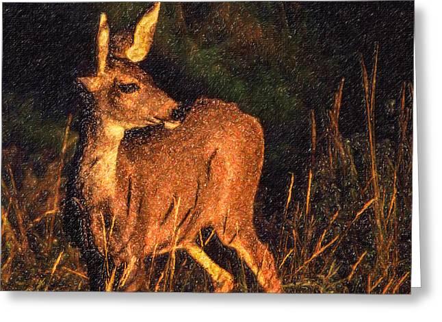 Mammal Greeting Cards - Mule Deer Odocoileus hemionus Greeting Card by Liz Leyden