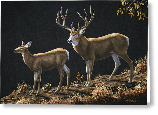 Big Game Greeting Cards - Mule Deer Ridge Greeting Card by Crista Forest