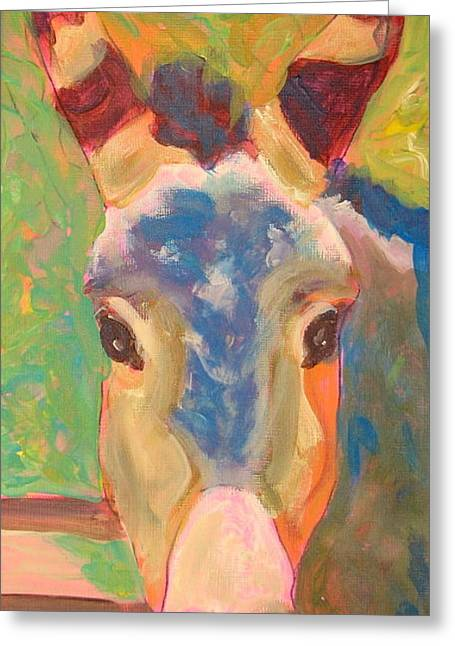 Mule With Color Greeting Card by Jodie  Scheller