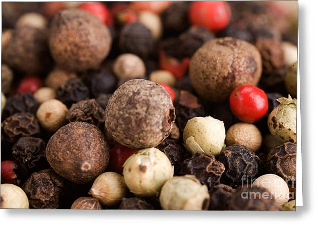 Commercial Photography Greeting Cards - Multicolor Peppercorns  Greeting Card by Iris Richardson