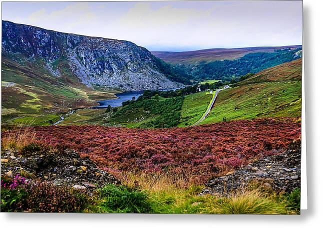 Summer Landscape Greeting Cards - Multicolored Carpet of Wicklow Hills. Ireland Greeting Card by Jenny Rainbow
