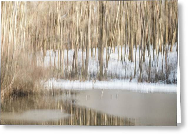 Multiple-exposure Of Trees In Winter Greeting Card by Rona Schwarz