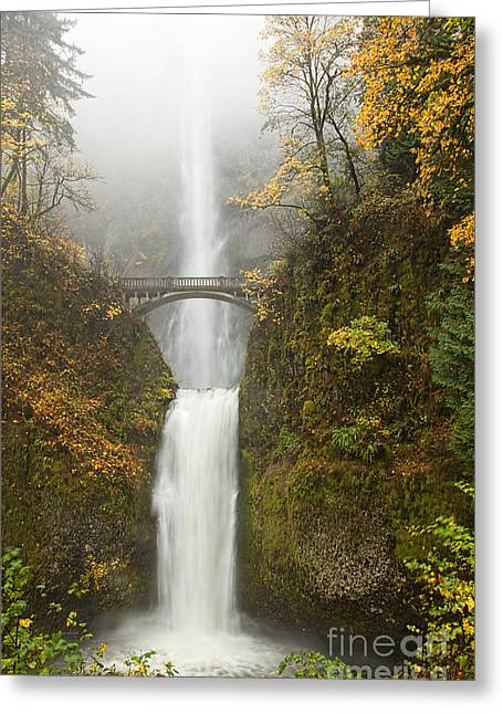Columbia River Greeting Cards - Multnomah Autumn Mist Greeting Card by Mike  Dawson