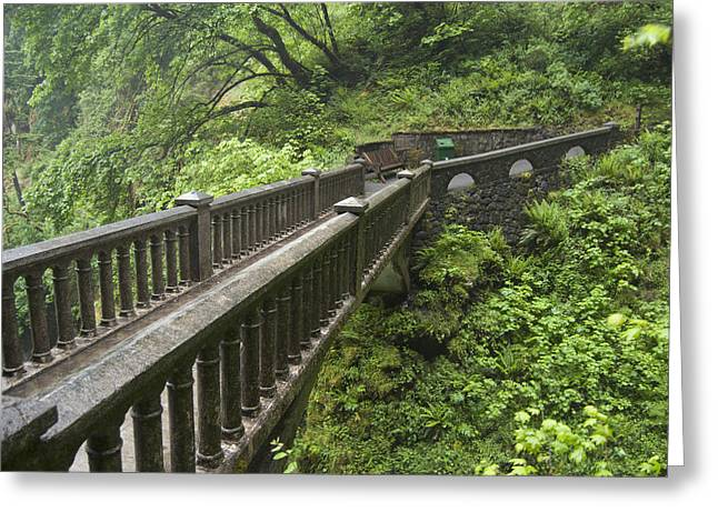 Digital Photography Greeting Cards - Multnomah Falls Bridge Greeting Card by Gary Grayson