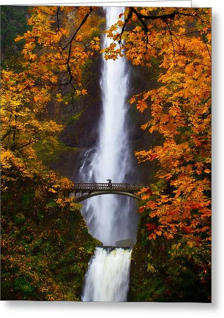 Moist Greeting Cards - Multnomah Falls Color Greeting Card by Darren  White