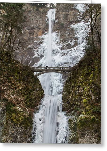 Tree In Rock Greeting Cards - Multnomah Falls on Ice Greeting Card by Angie Vogel