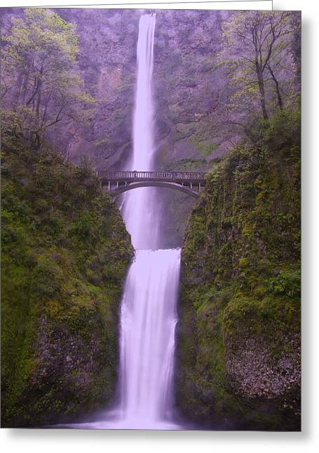 Oregon Waterfalls Greeting Cards - Multnomah In The Drizzling Rain Greeting Card by Jeff  Swan