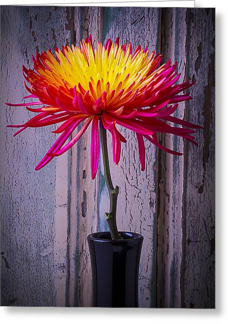 Old Vase Greeting Cards - Mum Against Old Wall Greeting Card by Garry Gay