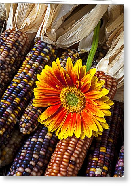Gerbera Greeting Cards - Mum and Indian corn Greeting Card by Garry Gay