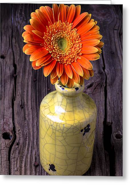 Mum Greeting Cards - Mum in yellow vase Greeting Card by Garry Gay