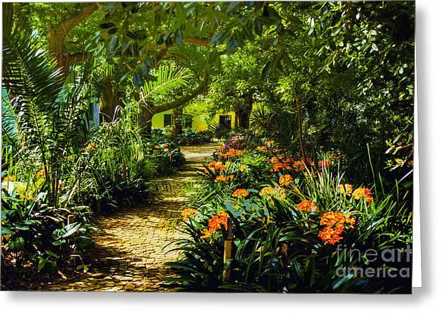 Stellenbosch Greeting Cards - Muratie Gardens Greeting Card by Rick Bragan