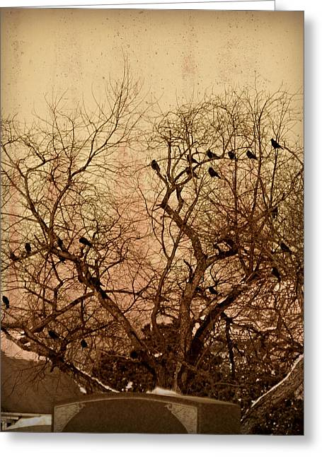 Ravens In Graveyard Photographs Greeting Cards - Murder in the Cemetery Greeting Card by Brenda Conrad