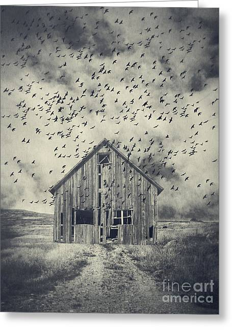White Barns Greeting Cards - Murder of Crows Greeting Card by Edward Fielding