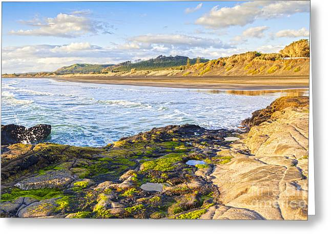 North Island Greeting Cards - Muriwai Beach Auckland New Zealand Greeting Card by Colin and Linda McKie