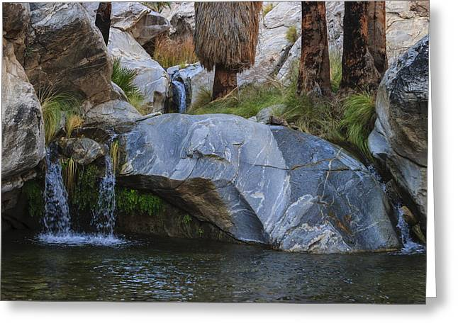 Desert Greeting Cards - Murray Canyon Falls Greeting Card by Scott Campbell