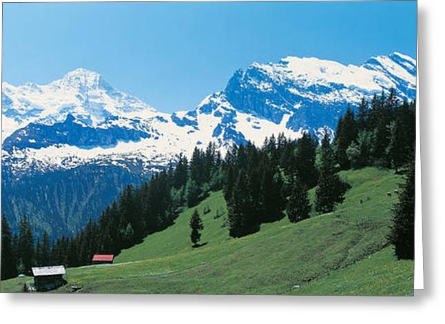 Snow-covered Landscape Photographs Greeting Cards - Murren Switzerland Greeting Card by Panoramic Images