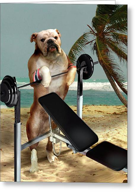 Dog Beach Print Greeting Cards - Muscle boy Boxer lifting weights Greeting Card by Gina Femrite