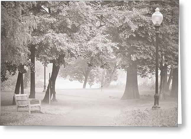 Lamp Post Mixed Media Greeting Cards - Museum Park Fog Greeting Card by Trish Tritz