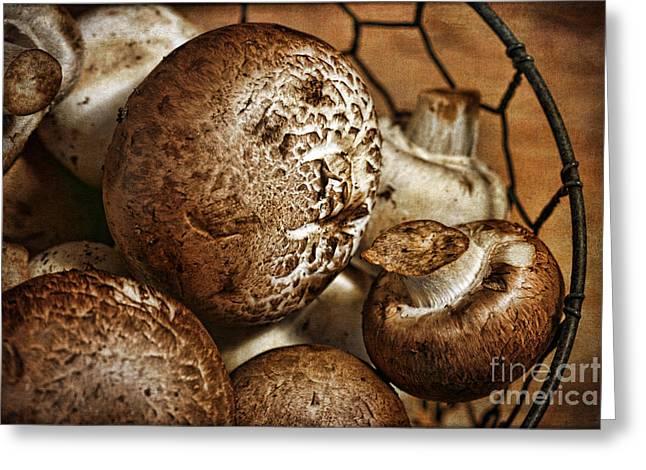 Button Mushrooms Greeting Cards - Mushrooms Greeting Card by Cindi Ressler