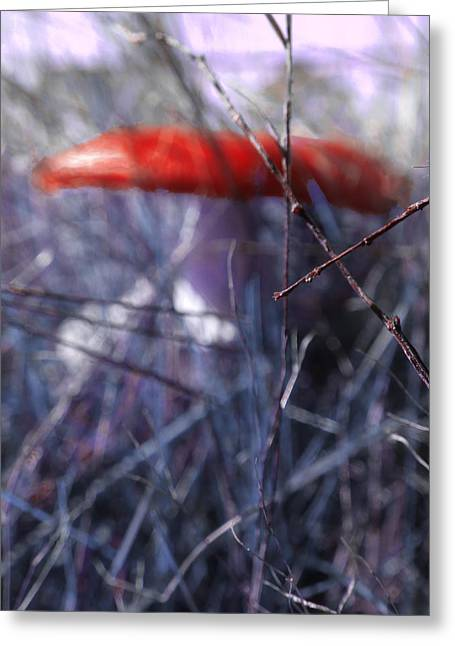 Purple Mushrooms Digital Greeting Cards - Mushrooms Contain Deadly Magic Greeting Card by Steve Taylor
