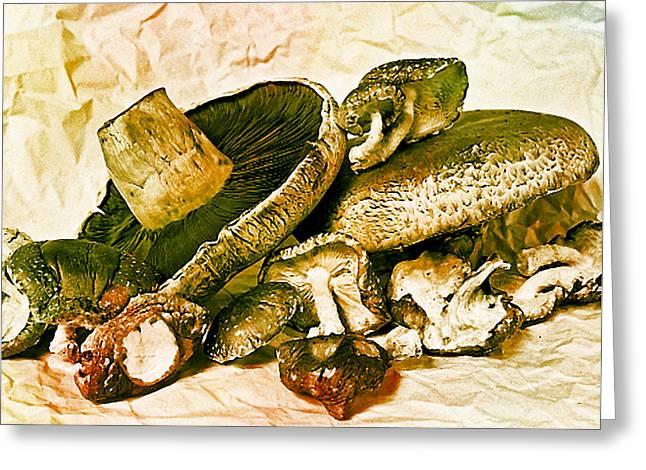 Button Mushrooms Greeting Cards - Mushrooms I Greeting Card by Ken Evans