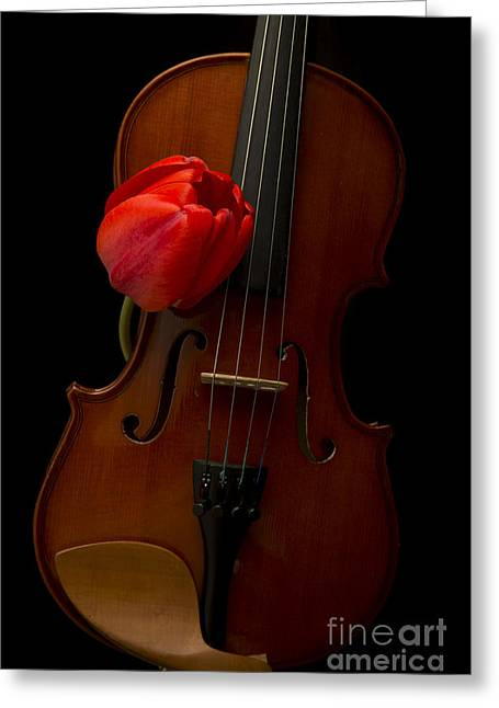 Burning Love Greeting Cards - Music Lover Greeting Card by Edward Fielding