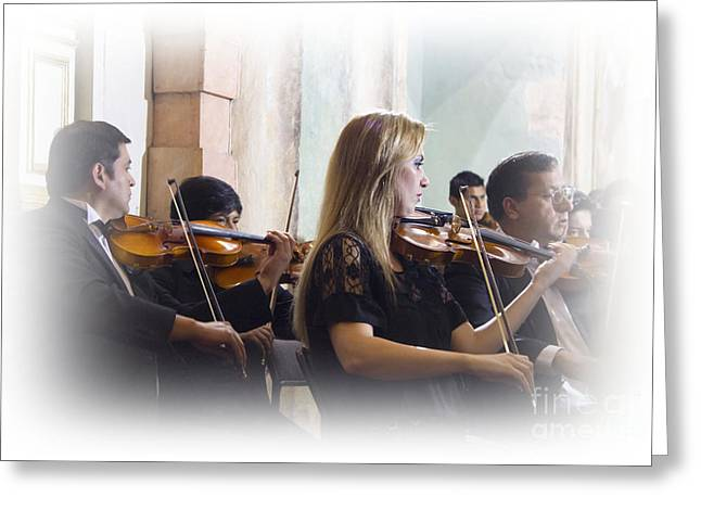Violin Bows Violin Bows Greeting Cards - Music To My Ears Greeting Card by Al Bourassa