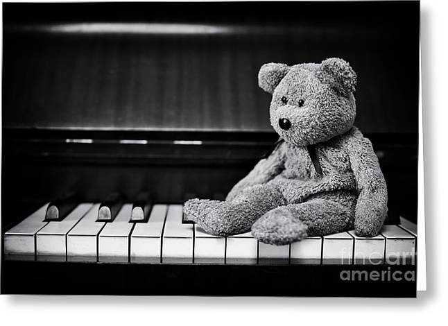 Musical Bear Greeting Card by Tim Gainey