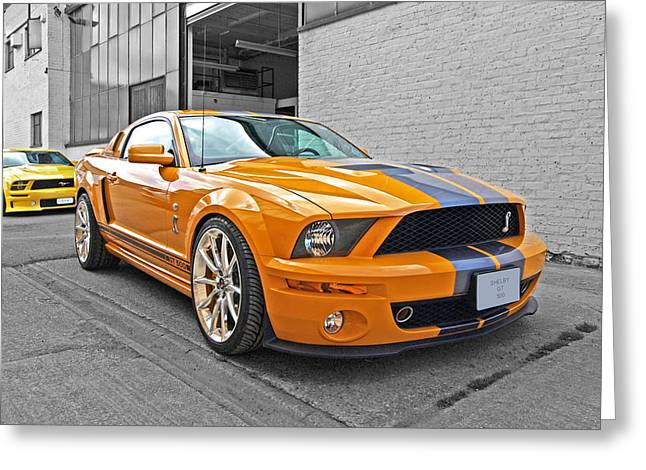 Yellow Cobra Greeting Cards - Mustang Alley Greeting Card by Gill Billington