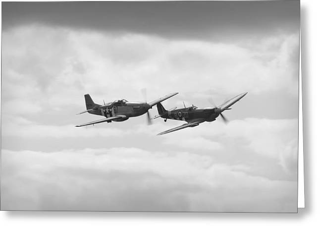 Ferocious Frankie Greeting Cards - Mustang and Spiffier Fighter planes Greeting Card by Maj Seda