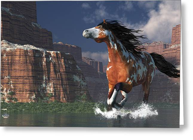 Spotted Horse Greeting Cards - Mustang Canyon Greeting Card by Daniel Eskridge
