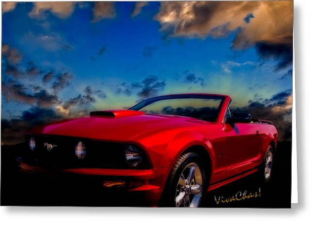 Barbara Eden Greeting Cards - Mustang Dream Greeting Card by Chas Sinklier