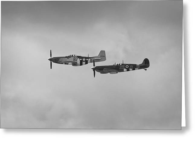 Ferocious Frankie Greeting Cards - Mustang P-51D and Spitfire Greeting Card by Maj Seda
